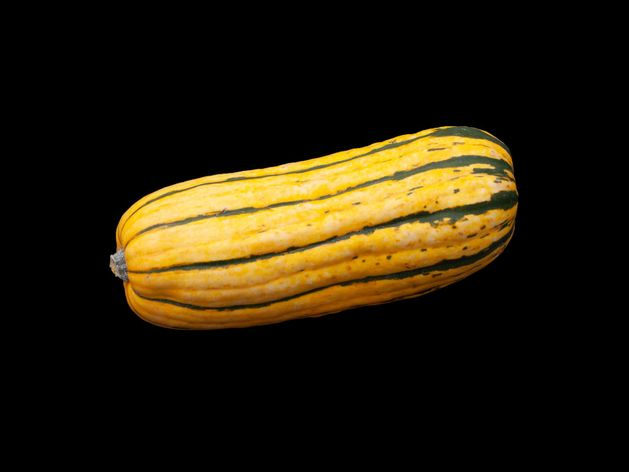 Delicata Squash wide display