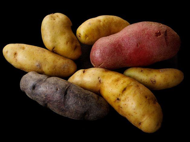 Fingerling Potatoes wide display