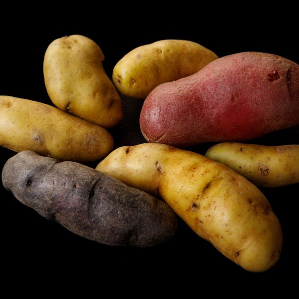 Fingerling Potatoes narrow display